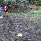 Banfield lab members collecting soil samples in backyard
